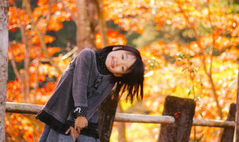 【紅葉】PhotoDirector 画像編集 手軽に色調を補正